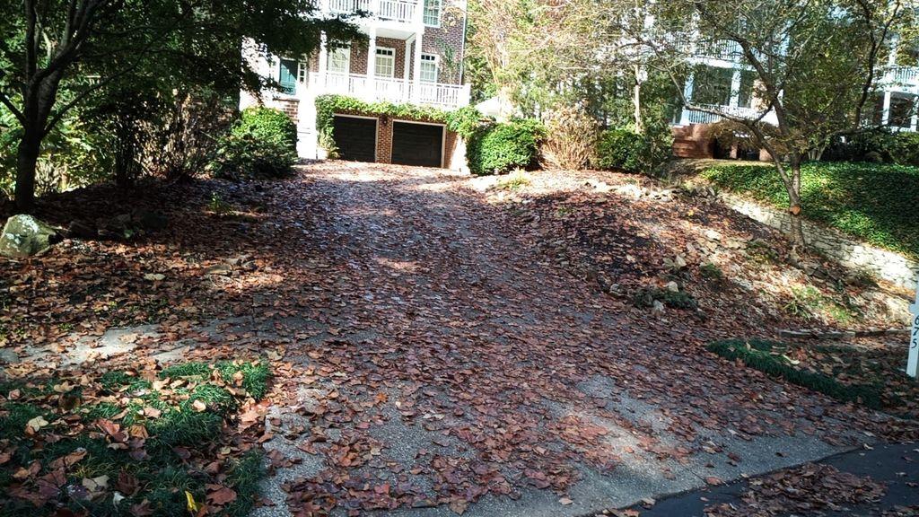 Blow Leaves