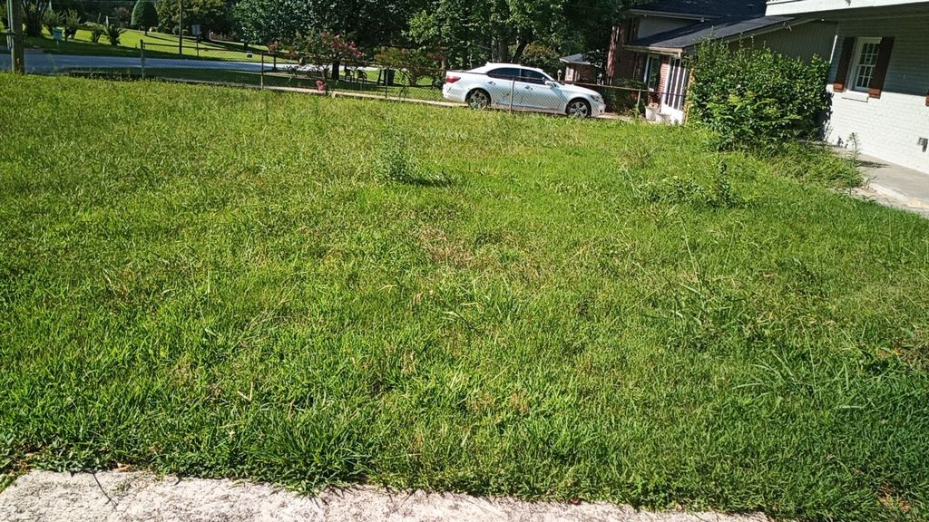 Lawn Mowing and Trimming - Decatur 2019