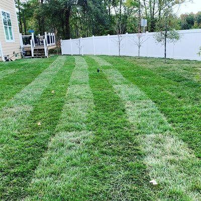 Avatar for Edge Landscaping llc Alexandria, VA Thumbtack