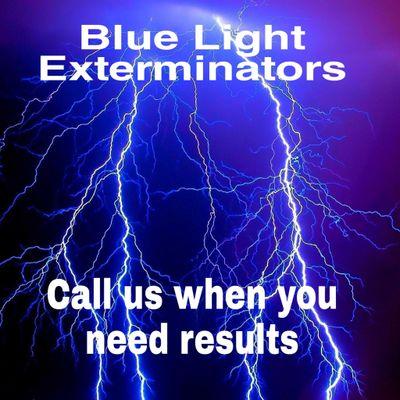 Avatar for Blue Light Exterminators Austin, TX Thumbtack