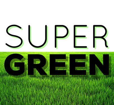 Avatar for Super Green Lawn Care, LLC Fort Wayne, IN Thumbtack