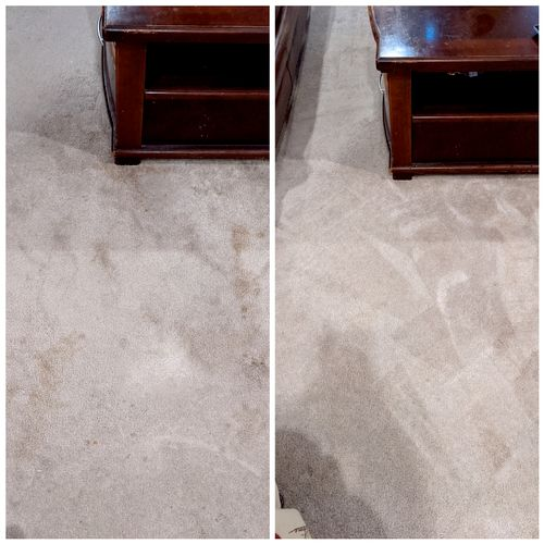 Before and After Spot Treatment