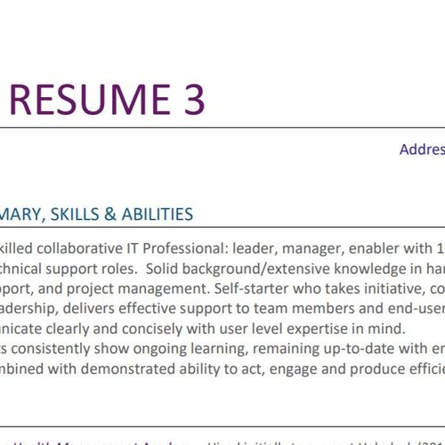 Your Professional resume 3