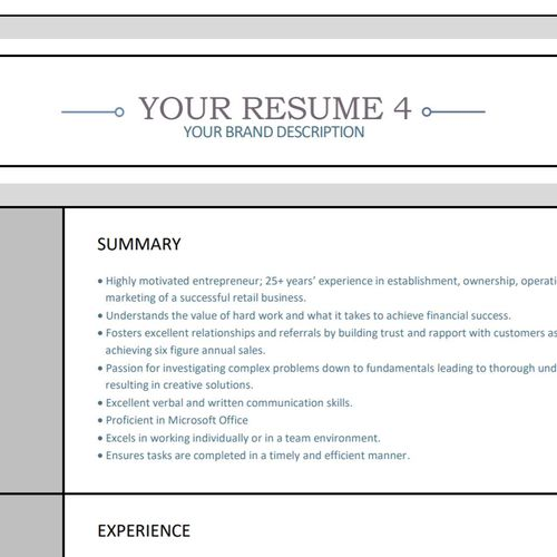 Your Professional resume 2