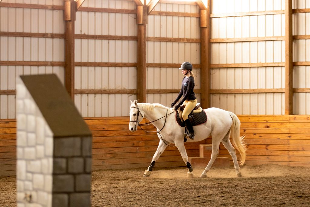 Equestrian lesson