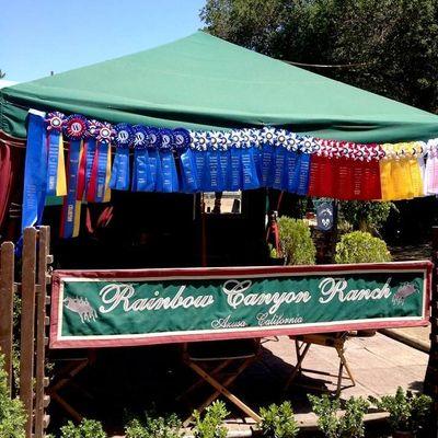Avatar for Rainbow Canyon Ranch Azusa, CA Thumbtack