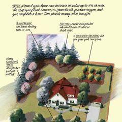 Avatar for Flower tree xpress landscape lawns maintenance Reading, PA Thumbtack