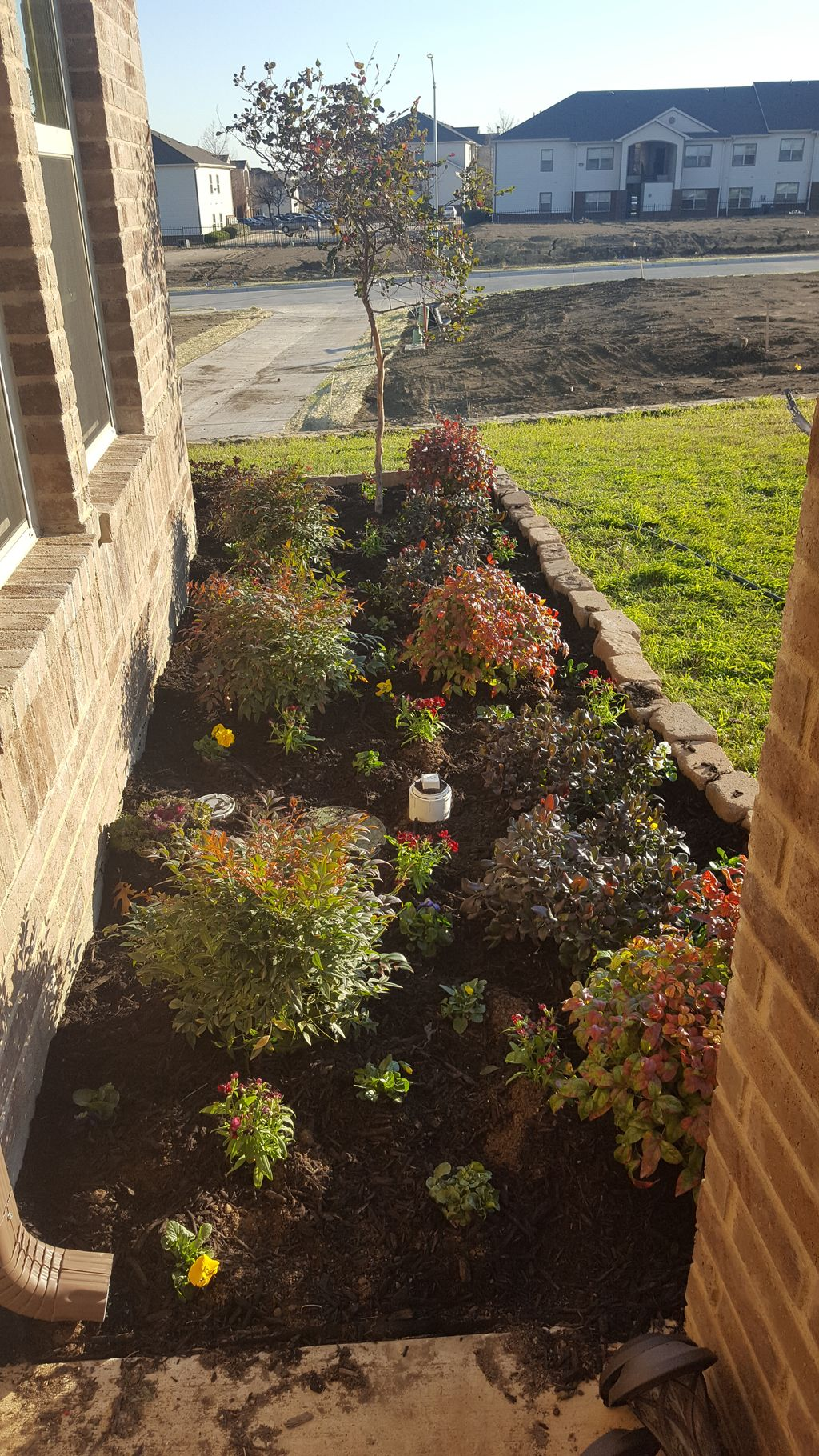 Re do Home landscaping