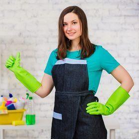 Perfect Polished Maids