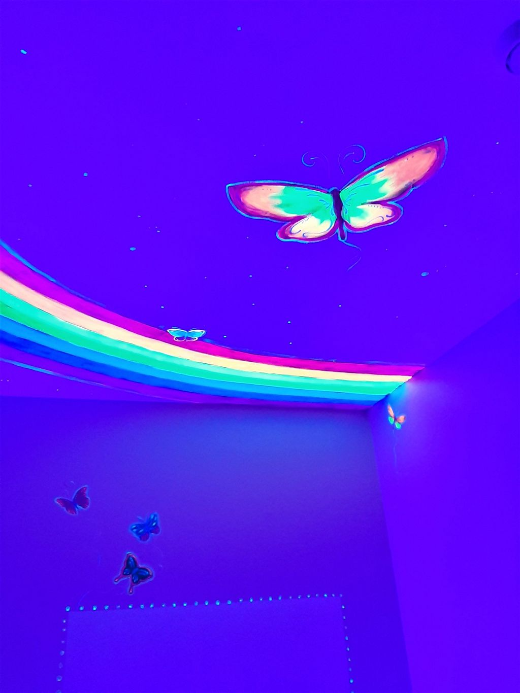 Child's Butterfly Room