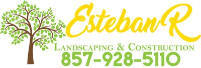 Avatar for Esteban R Landscaping & construction