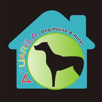 Avatar for Acuarela Dog Ranch Fort Lauderdale, FL Thumbtack