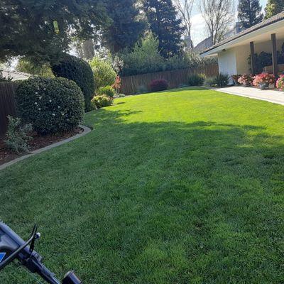 Avatar for OP Lawn maintenance Sacramento, CA Thumbtack