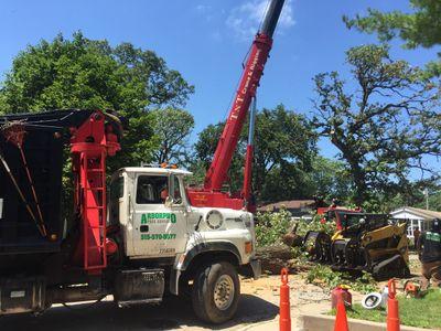 Avatar for Arborpro Tree Service Fort Dodge, IA Thumbtack