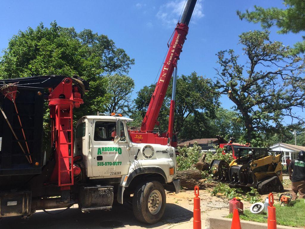 Arborpro Tree Service