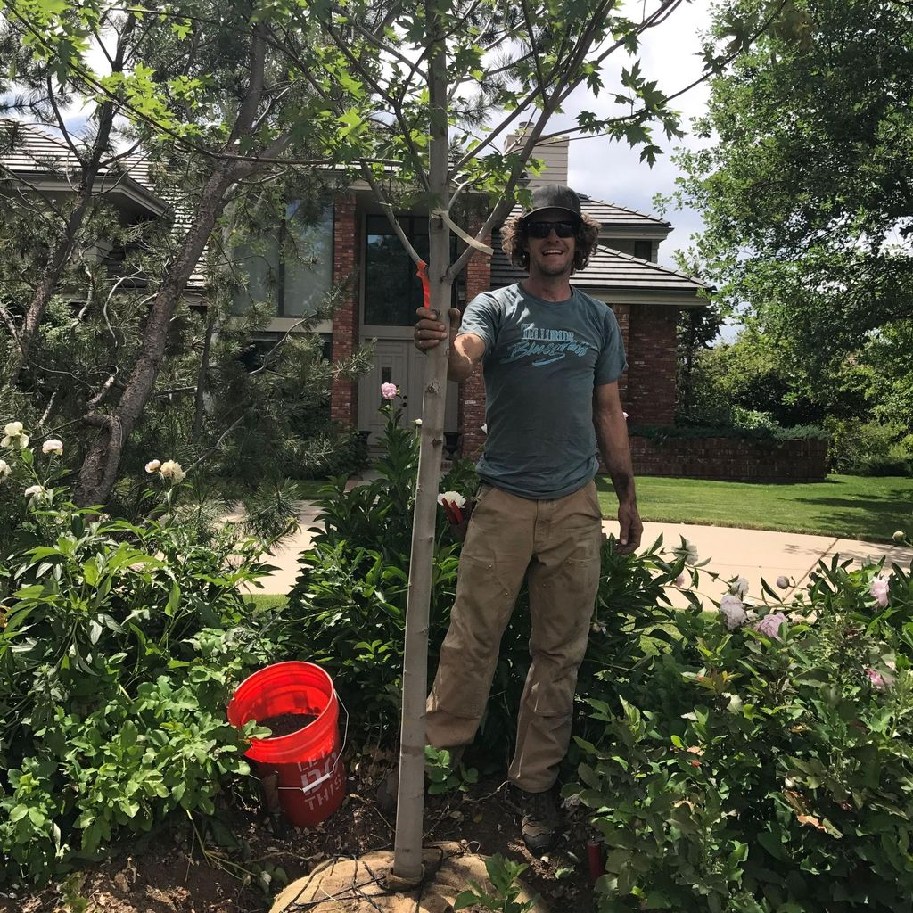 Johnny Apple Tree Care