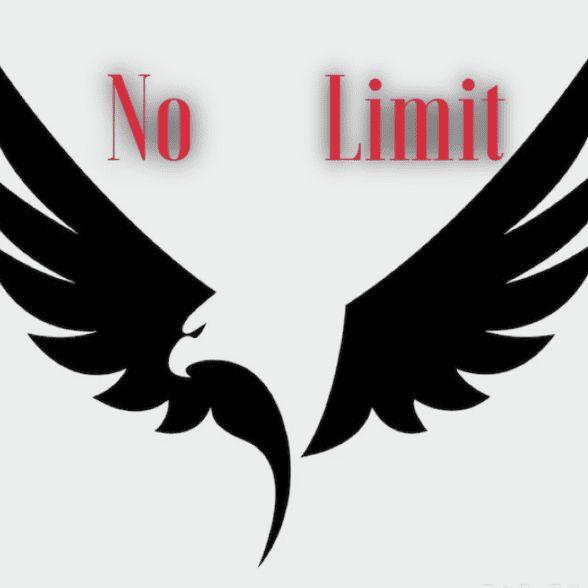No Limit Laborers LLC
