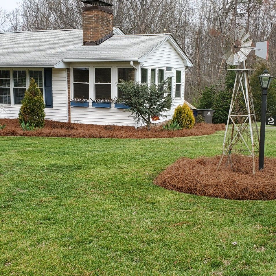 Pine needles,mow trim repairs downspouts