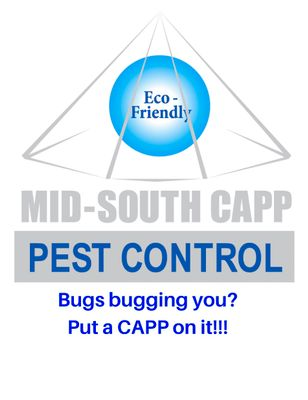 Avatar for Mid-South Cleaning and Pest Proofing
