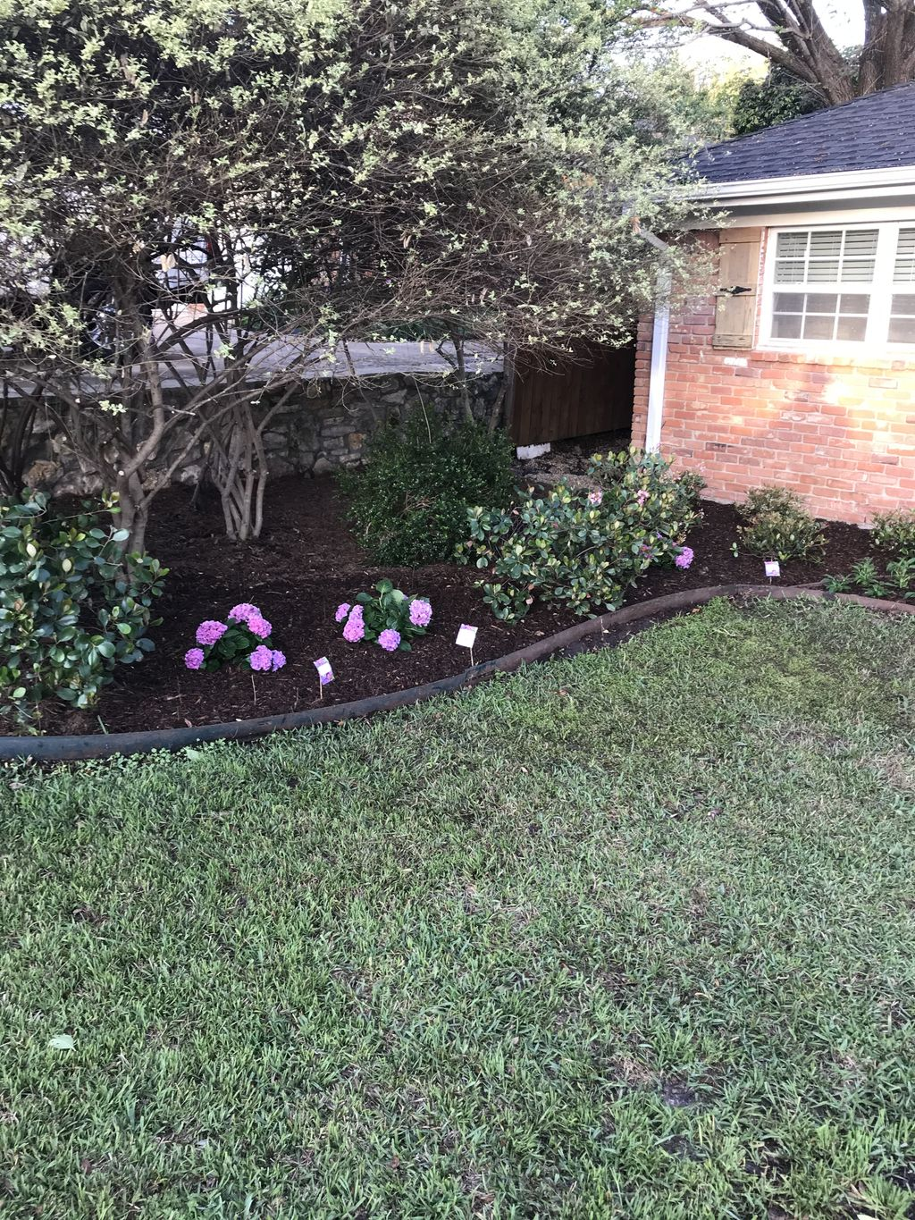 Landscape rehab and makeover
