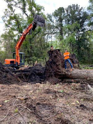 Avatar for CDCM Environmental Managment LLC
