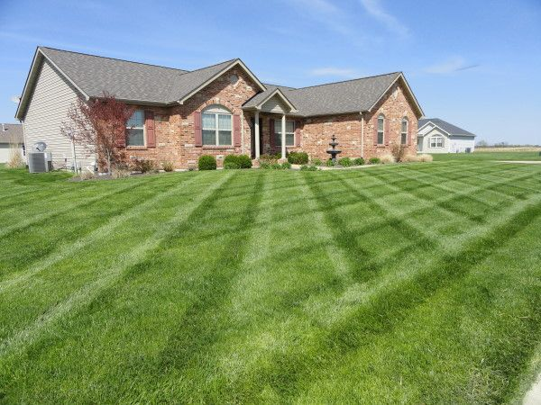 House done by Palma lawn & landscape team