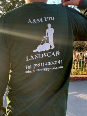 Avatar for A&M pro landscape San Bernardino, CA Thumbtack