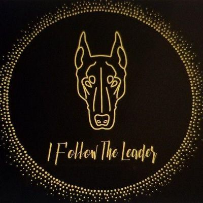 Avatar for I Follow The Leader