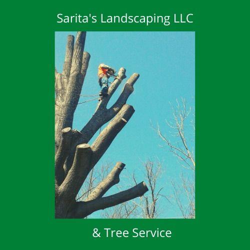 saritas landscaping/tree service