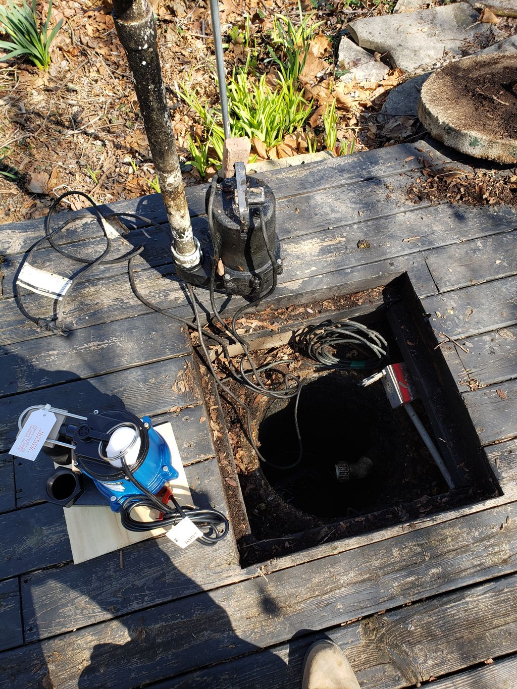 Septic Pump replacement