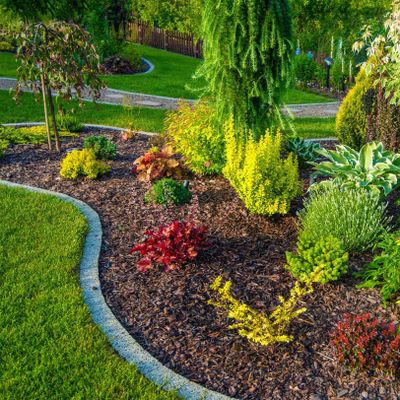 Avatar for AL Landscaping LLC Renton, WA Thumbtack