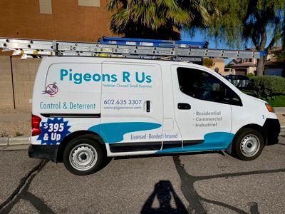 Avatar for Pigeons R Us Phoenix, AZ Thumbtack