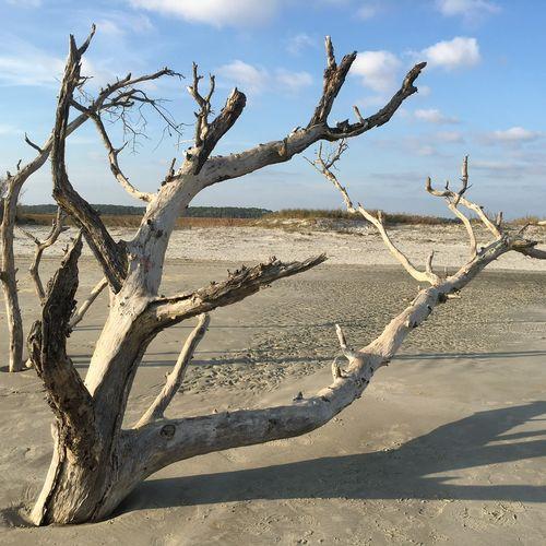 Folly Beach, South Carolina