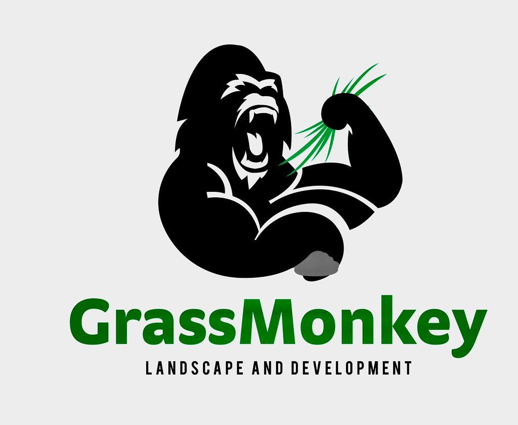 Grass monkey landscape and development