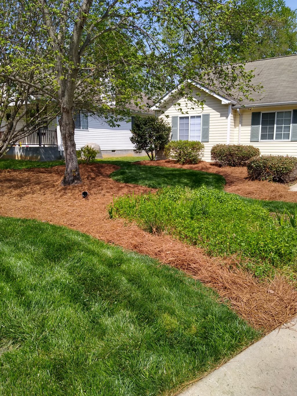 Lawn treatment, mowing, and mulch