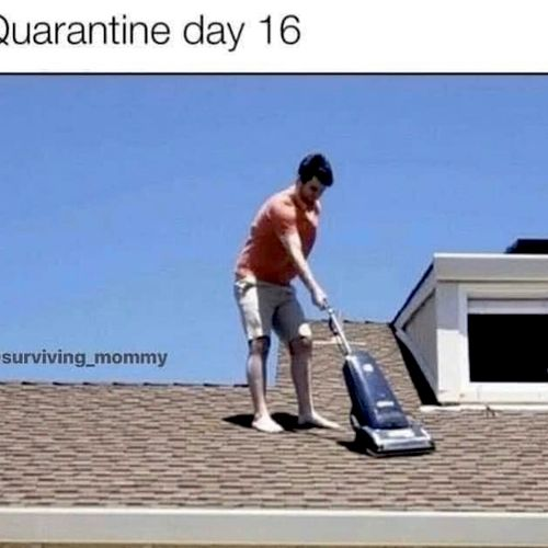 🤣🤣  my vacuumed roof 🤣🤣 - NOT