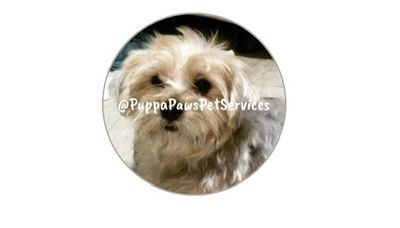 Avatar for Puppapaws Pet Services