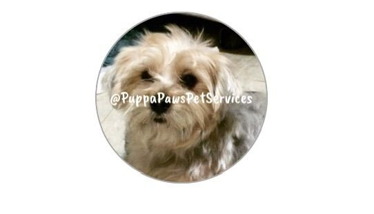 Puppapaws Pet Services