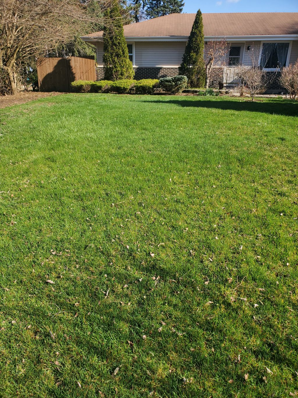 Spring Cleaning And Lawn Maintenance