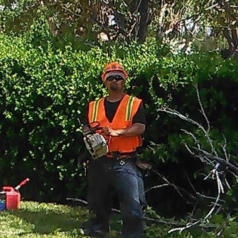 Manny's Tree Care