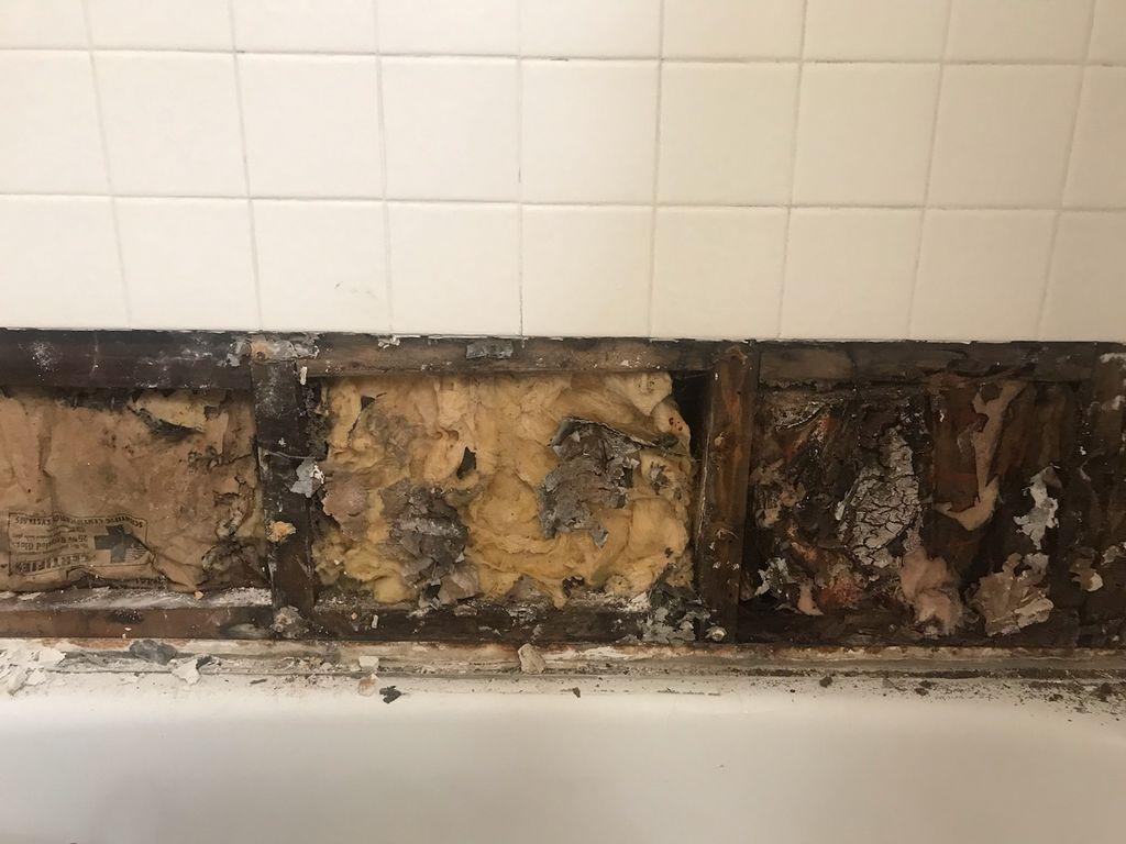 Sonias Bathtub Wall Replacement