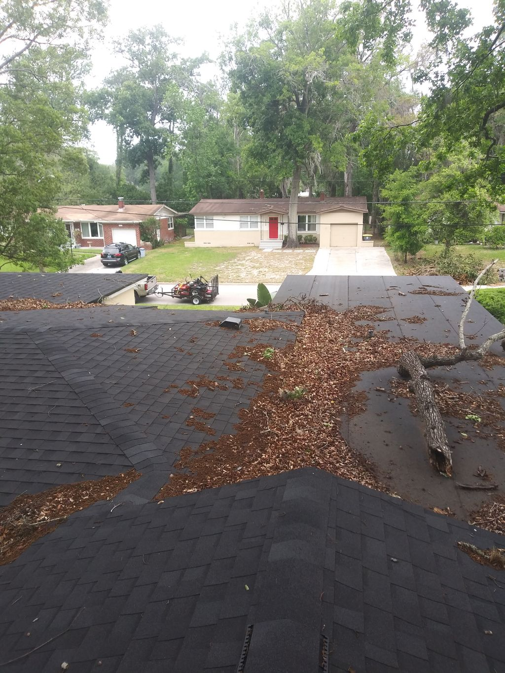 Roof cleaning and trim tree branch
