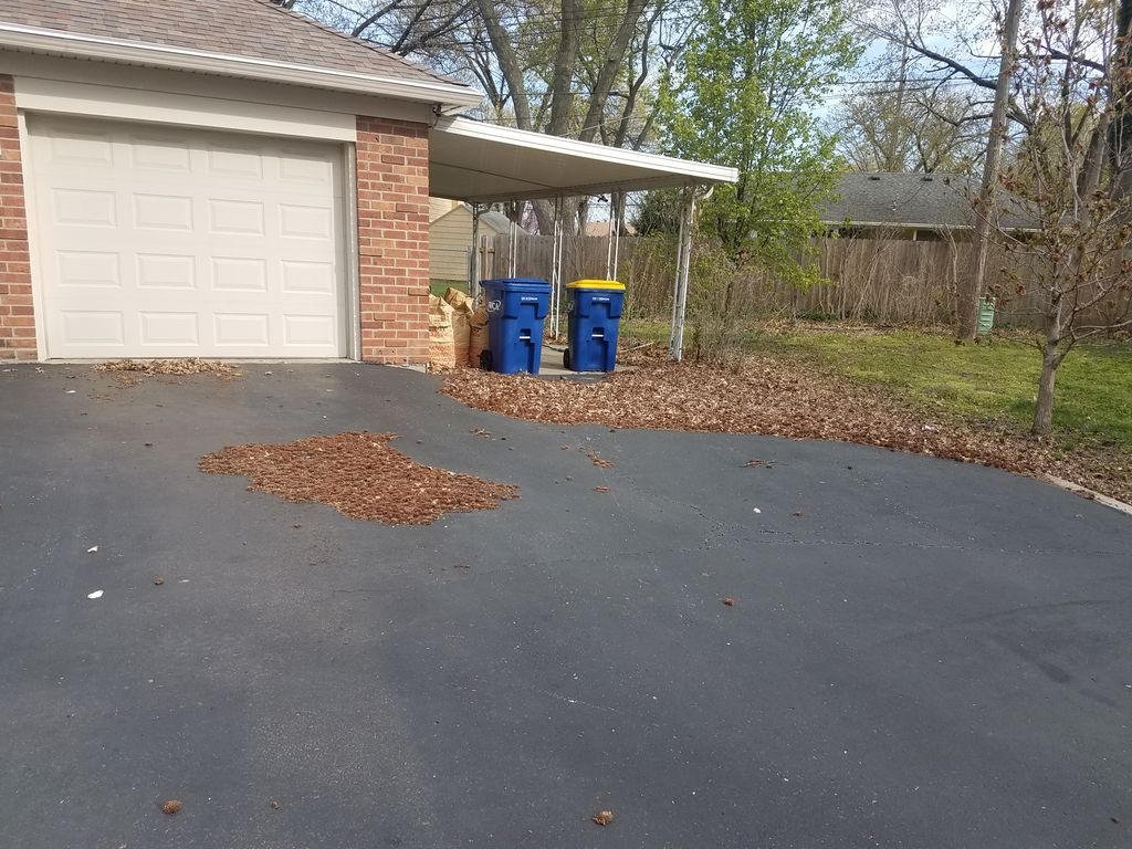 Leaf clean up