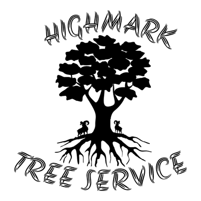 Avatar for HIGHMARK TREE SERVICE LLC