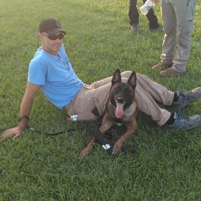 Avatar for Guardian Angels K9 Training