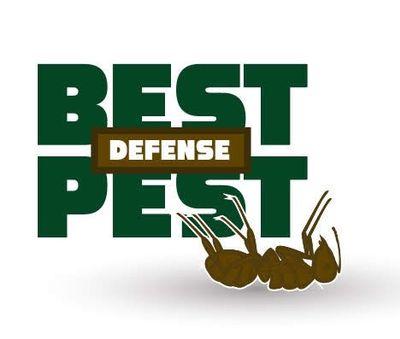 Avatar for Best Pest Defense