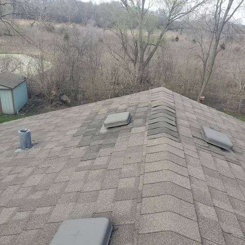 Raccoon Mom Captured and Removed. Full Roof Repair.