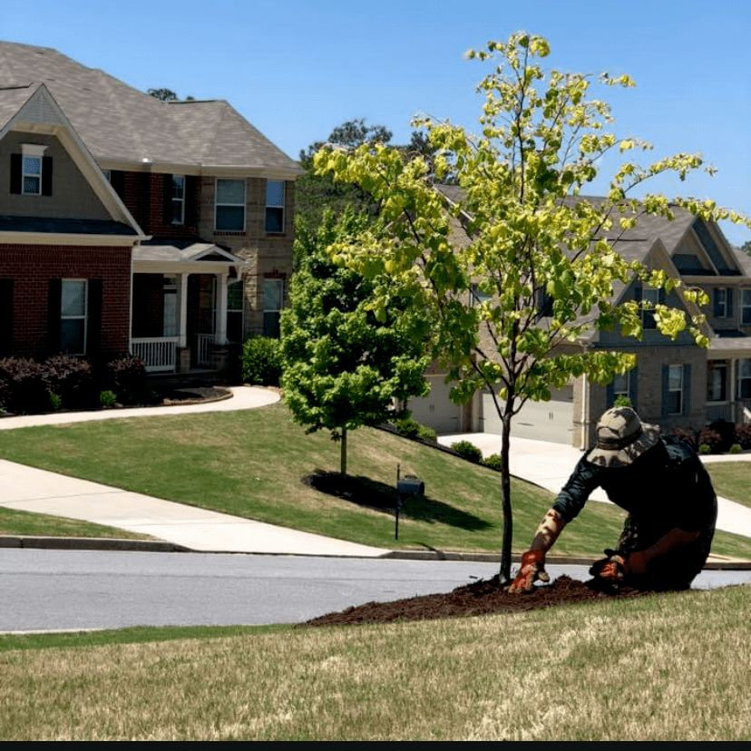 New Yard New You Landscaping