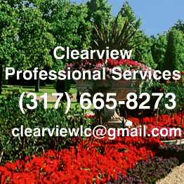 Avatar for Clearview Professional Services