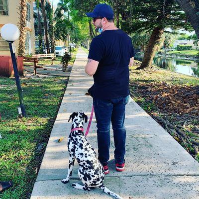 Avatar for K9 Solutions Dog Training